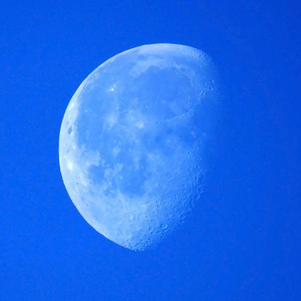 Feb Wall Art - Photograph - Moon Feb 2nd 2013 by Ernie Echols