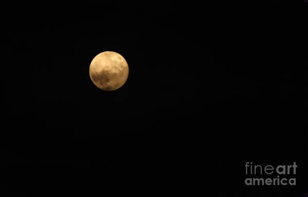 Photograph - Moon Glow by Karen Adams
