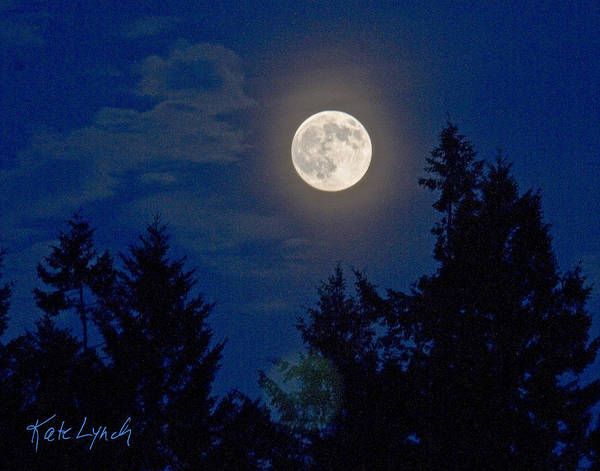 Photograph - Moon Glow by Kate Lynch