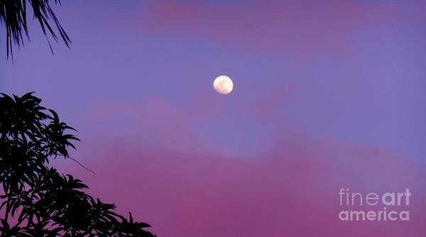 Photograph - Moon Hanging Lazily by Christopher Shellhammer