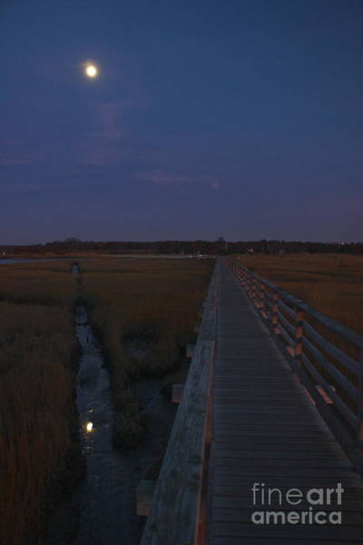Photograph - Moon Lit Boardwalk by Amazing Jules