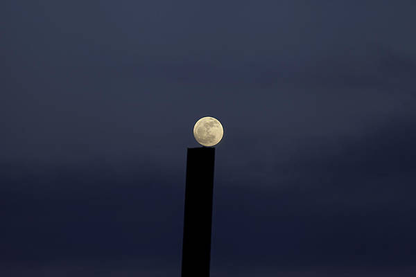 Photograph - Moon On A Post by Fran Riley