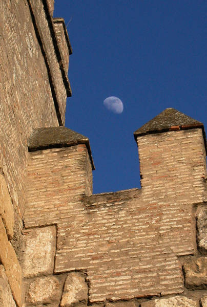 Moon Over Alcazar Art Print
