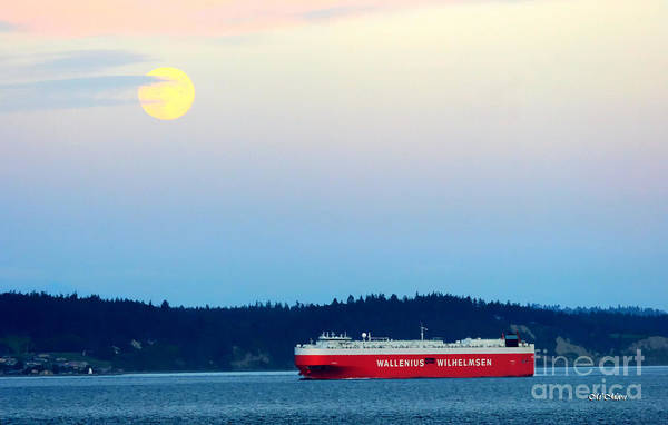 Photograph - Moon Over Puget Sound by Tap On Photo