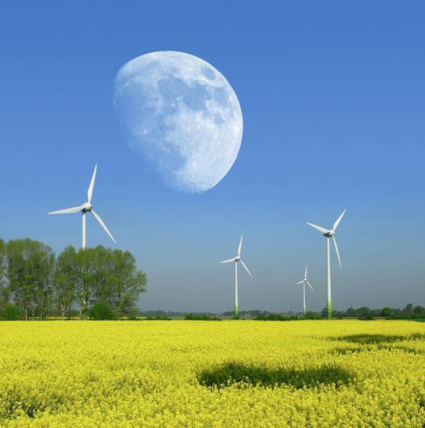 Electrical Field Wall Art - Photograph - Moon Over Wind Turbines In A Field by Detlev Van Ravenswaay
