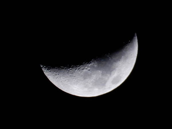 Photograph - Moon by Pamela Walton