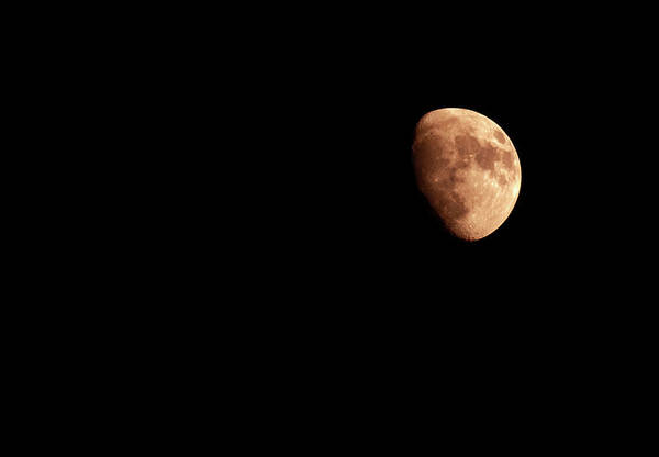 Wall Art - Photograph - Moon Photo Gibbous by Orchidpoet