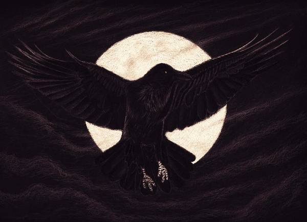 Raven Drawing - Moon Raven by Sesh Artwork