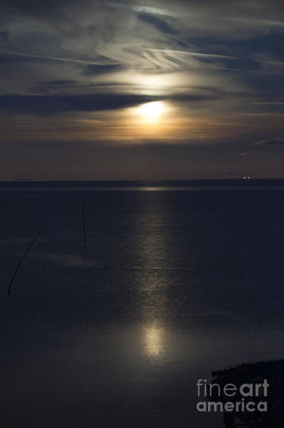 After Dark Photograph - Moon Rise by Anne Gilbert