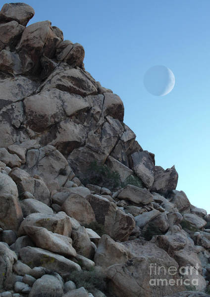 Photograph - Moon Rise Over Joshua Tree by Gregory Dyer