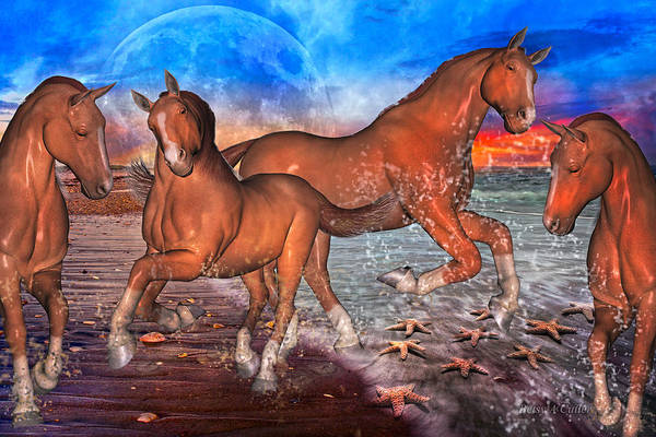 Fun Run Digital Art - Moon Rise Splendor by Betsy Knapp
