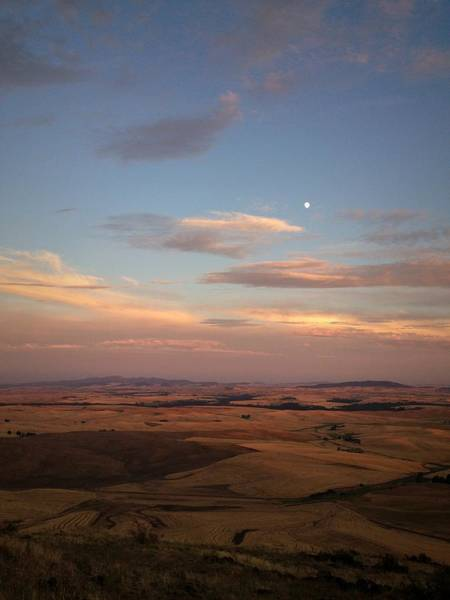 Photograph - Moon Rising At Sunset In The Palouse by Victoria Porter