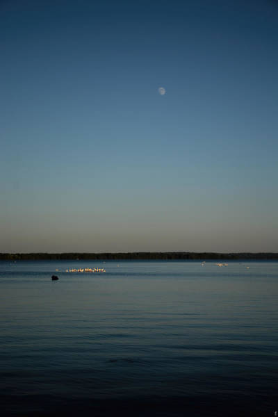 Photograph - Moon Rising Over Reelfoot by Jai Johnson
