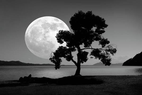 Wall Art - Photograph - Moon Rising Over The Sea by Detlev Van Ravenswaay