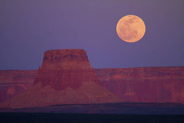 Perigee Moon Photograph - Moon Rising Over Tower Butte by David Wall