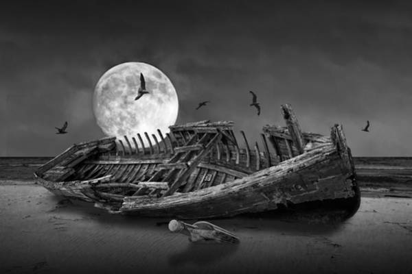 Photograph - Moon Shipwreck by Randall Nyhof