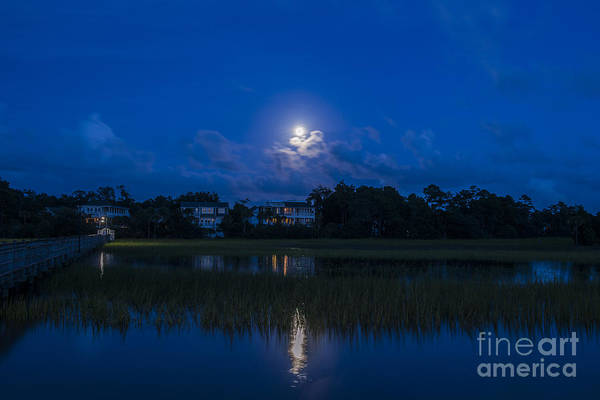 Photograph - Moon Sky by Dale Powell