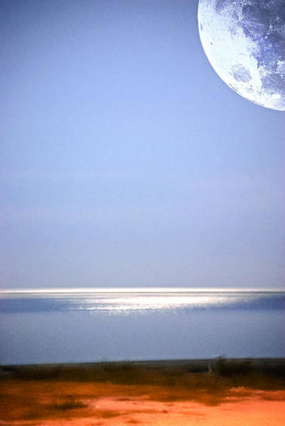 Photograph - Moon Vision by Judy Hall-Folde