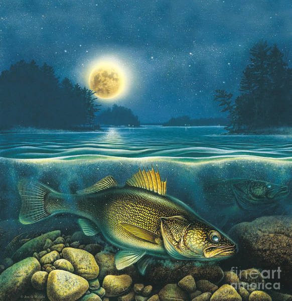 Painting - Moon Walleye 4 by JQ Licensing