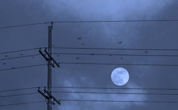 Utility Pole Photograph - Moonbeams by Don Spenner