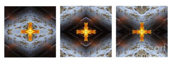 Photograph - Moonbird Triptych by Gerald Grow