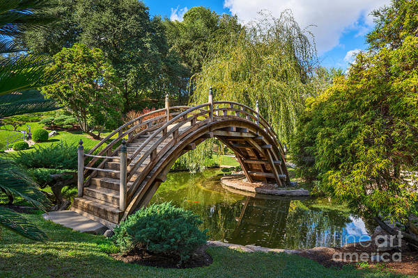 Carp Photograph - Moonbridge - The Beautifully Renovated Japanese Gardens At The Huntington Library. by Jamie Pham