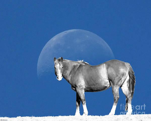 Digital Art - Moonhorse by Lizi Beard-Ward