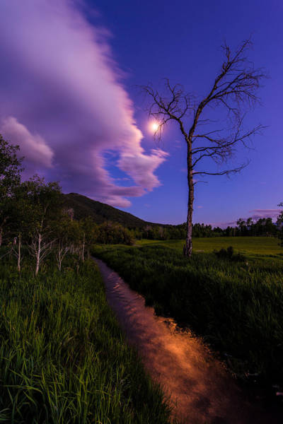 Moonrise Photograph - Moonlight Meadow by Chad Dutson