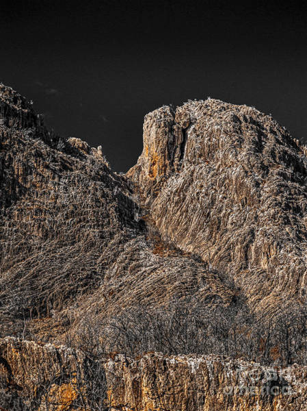 Photograph - Moonlight On The Hill by Russell Brown