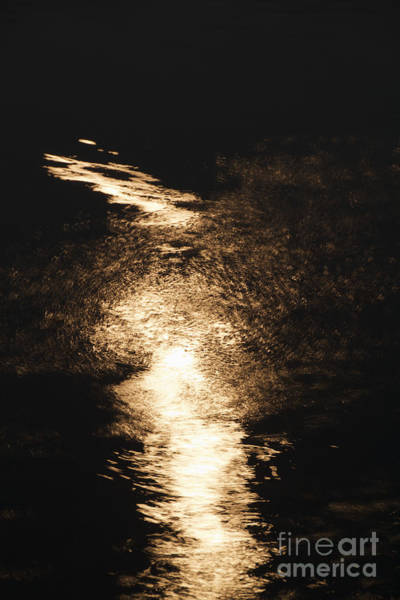 Photograph - Moonlight Reflections by William Norton