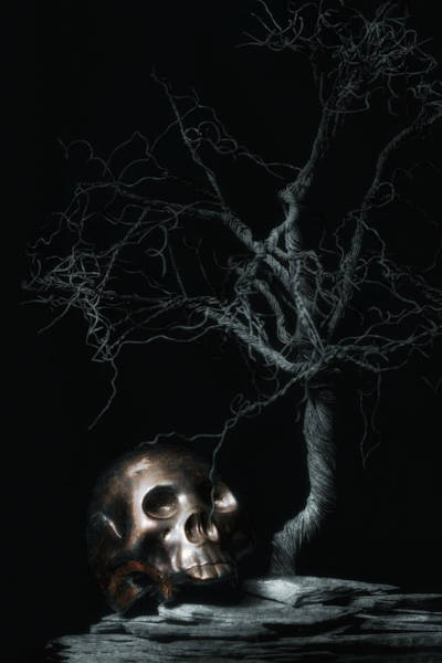 Atmospheric Photograph - Moonlit Skull And Tree Still Life by Tom Mc Nemar