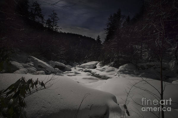 Photograph - Moonlite Snow Blackwater River Gorge by Dan Friend