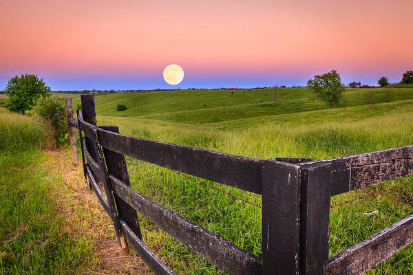 Bluegrass Photograph - Moonrise by Alexey Stiop