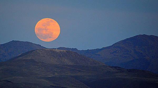 Photograph - Moonrise Over The Desert by AJ  Schibig