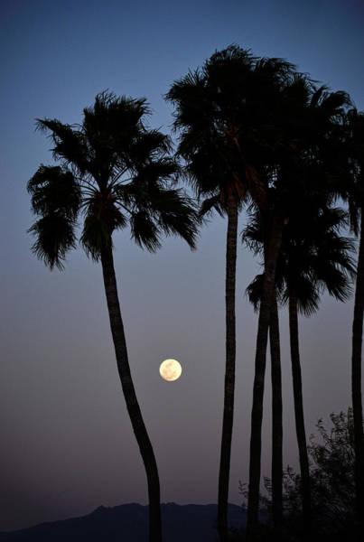 Wall Art - Photograph - Moonrise Over Tucson by Michael McGowan