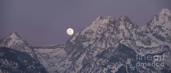 Wall Art - Photograph - Moonset On The Grand Tetons by Sandra Bronstein