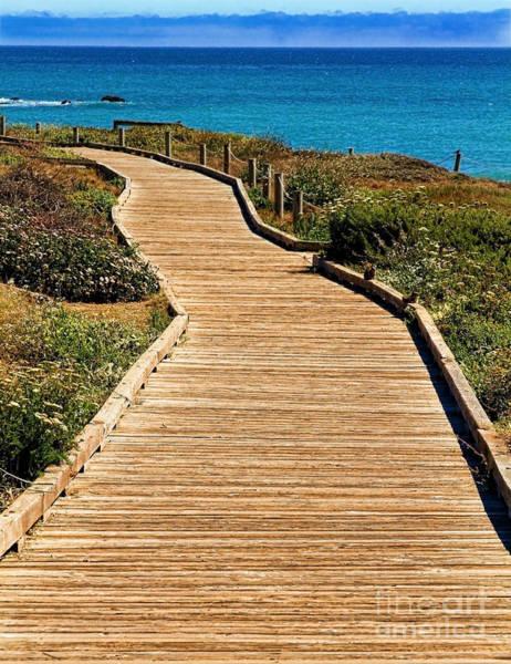 Photograph - Moonstone Beach Park By Diana Sainz by Diana Raquel Sainz
