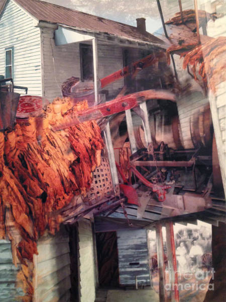Wall Art - Digital Art - Moore Memories Elm City by Ellen Moore Osborne