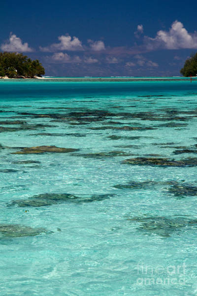 Polynesia Wall Art - Photograph - Moorea Lagoon No 10 by David Smith