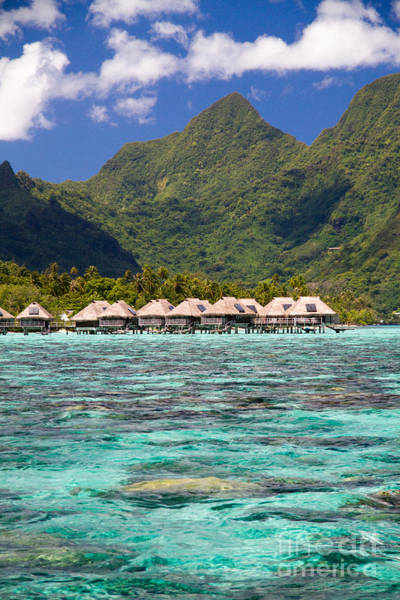 Polynesia Wall Art - Photograph - Moorea Lagoon No 3 by David Smith