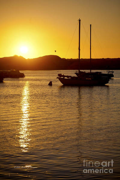 Photograph - Mooring At Sunset by Richard J Thompson