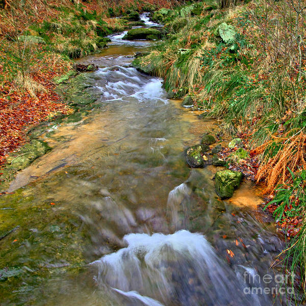 Photograph - Moorland Stream by Martyn Arnold