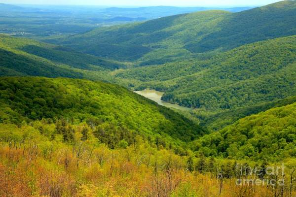 Photograph - Moormans River Overlook by Adam Jewell