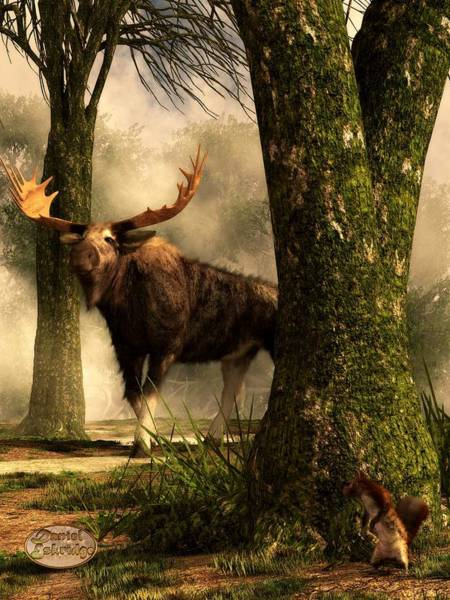 Rockies Digital Art - Moose And Squirrel by Daniel Eskridge