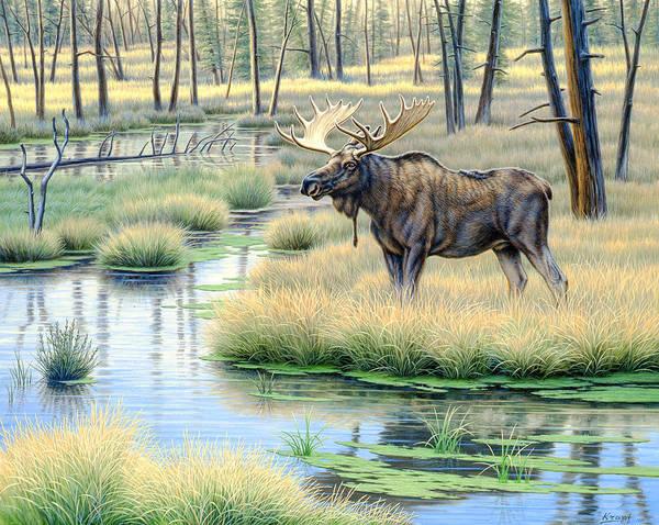 Marsh Wall Art - Painting - Moose Country by Paul Krapf