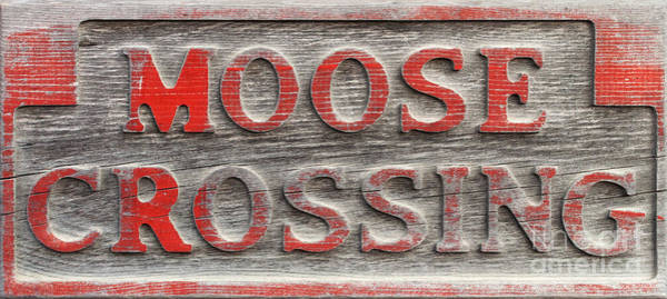 Photograph - Moose Crossing Sign by Les Palenik