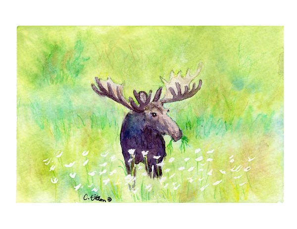 Painting - Moose In Flowers by C Sitton