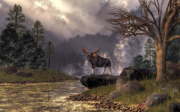 Adirondack Mountains Digital Art - Moose In The Adirondacks by Daniel Eskridge