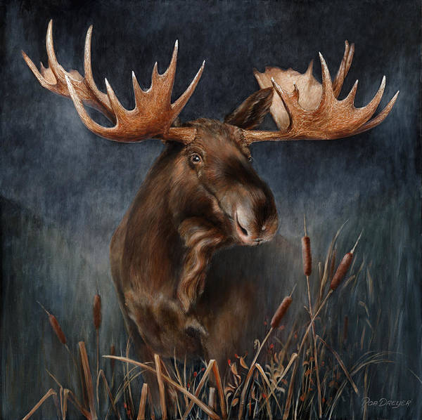 Antlers Painting - Moose In The Mist by Dreyer Wildlife Print Collections
