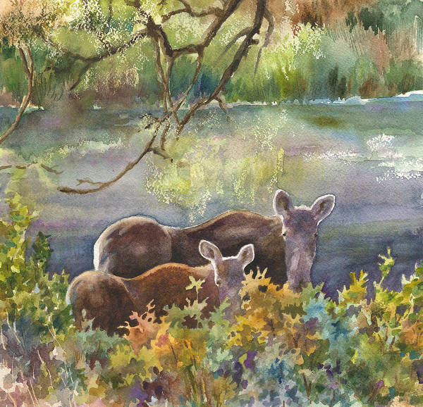 Colorado Wildlife Wall Art - Painting - Moose In The Morning by Anne Gifford